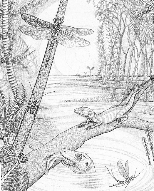 Joggins Carboniferous Swamp From 350 Million Years Ago Tanya Young