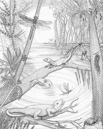 JOGGINS (NOVA SCOTIA) CARBONIFEROUS SWAMP FROM 350 MILLION YEARS AGO (PENNSYLVANIA PERIOD); for Brains Through Time, A Natural History of Vertebrates to be published by Oxford University Press February 2019