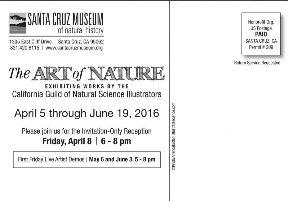 My painting THE SCRIPPS SUBMARINE CANYON will be on display as part of this exhibition at The Santa Cruz Museum of Natural History. The opening is April 8, 2016, for anyone who will be in the area!