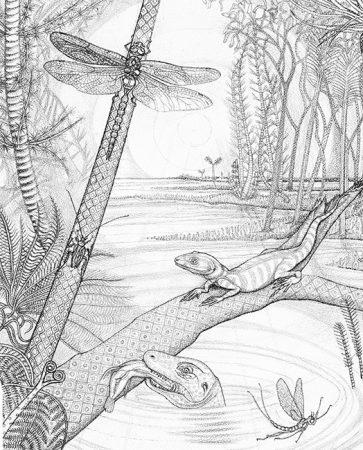 DETAIL, JOGGINS (NOVA SCOTIA) CARBONIFEROUS SWAMP FROM 350 MILLION YEARS AGO (PENNSYLVANIA PERIOD)