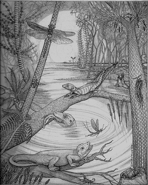 """JOGGINS (NOVA SCOTIA) CARBONIFEROUS SWAMP FROM 350 MILLION YEARS AGO (PENNSYLVANIA PERIOD); for Brains Through Time, A Natural History of Vertebrates, Oxford University Press. Graphite and charcoal on Coquille board, 10 x 8""""."""